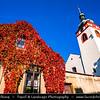 Europe - Czech Republic - Czechia - Bohemia -  Brandýs nad Labem-Stará Boleslav - Kostel Nanebevzetí Panny Marie - Church of the Assumption of the Virgin Mary - Warm autumn colors during fall season