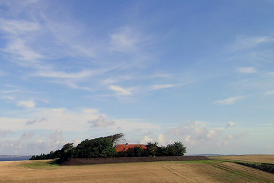 Elmholm - Danish Farm