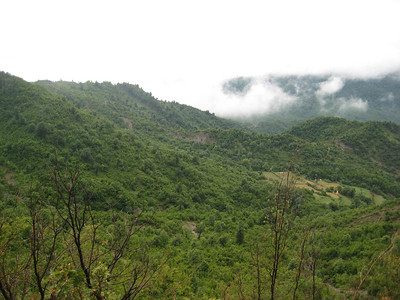 valley_hills_view_3