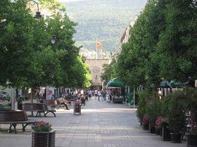 street_trees