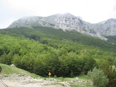 mountains_tress