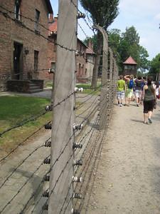 fences_05