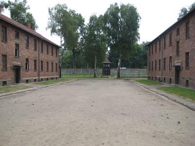 buildings_08
