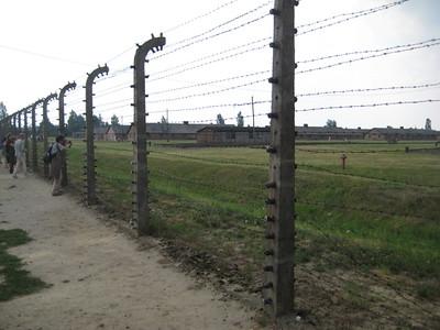 fences_10