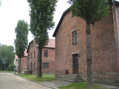 buildings_06