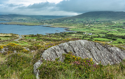 Farms and Fields on the Ring of Beara
