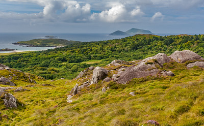 Rocky Meadow, Forest and Deenish and Scariff Islands - Ring of Kerry