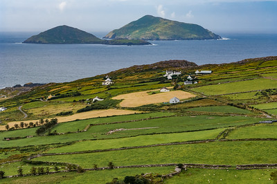 Farms and Skellig Islands - County Kerry