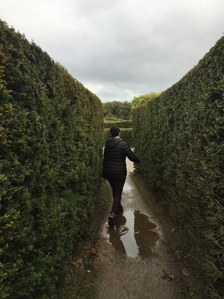 Alnwick Gardens maze