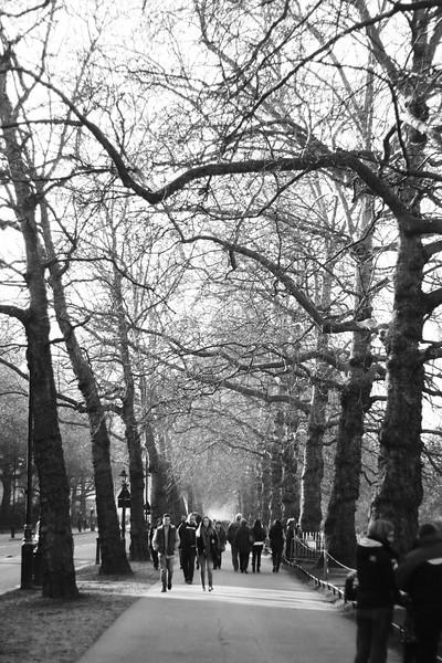Walking around Hyde Park. February 2013