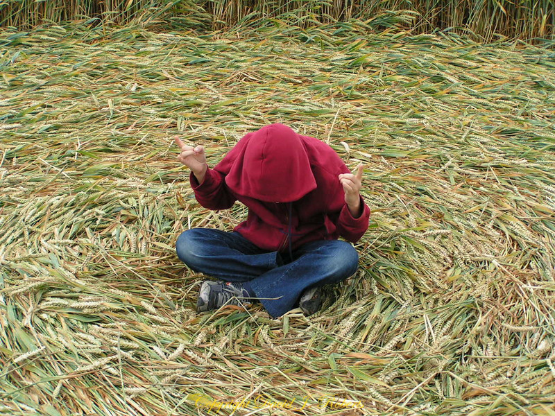 Rachel tries to get in touch with aliens at the exact center of a crop circle near Avebury, England. She is listening!