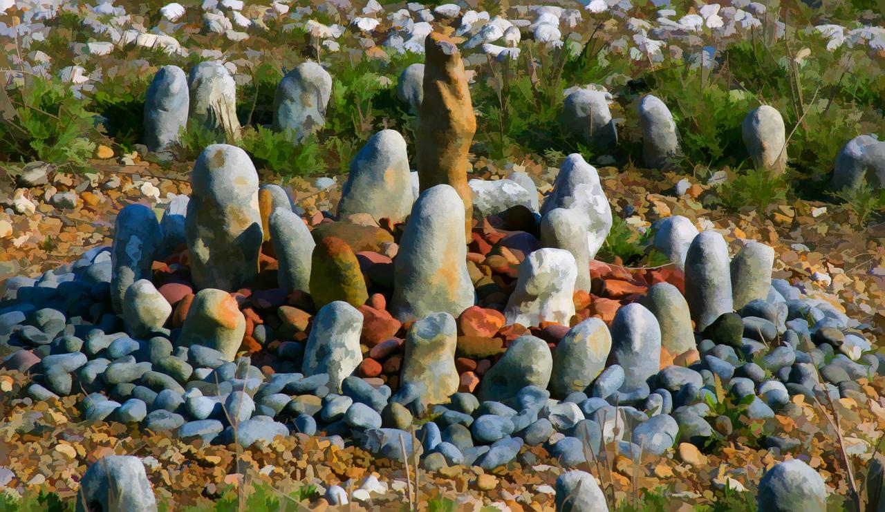 Still Life IV,Dunginess, England, 2004