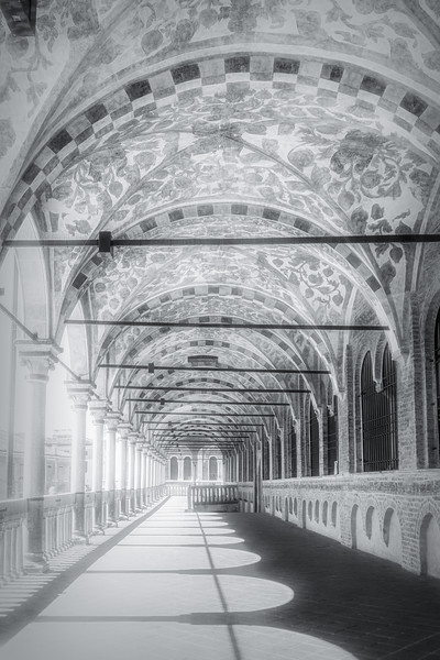 Arches All Around in Black and White