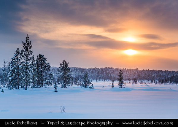 Europe - Finland - Lapland - Lappi - The largest & northernmost region of Finland - North of the Arctic Circle - Saariselkä - Suoločielgi - Winter sports center high up in a mountainous area of Finnish Lapland - 250 km north of the Arctic Circle under fresh cover of snow during winter time