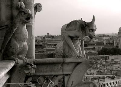 Notre Dame Gargoyles, Paris France
