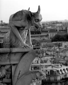 Notre Dame Gargoyle Paris, France