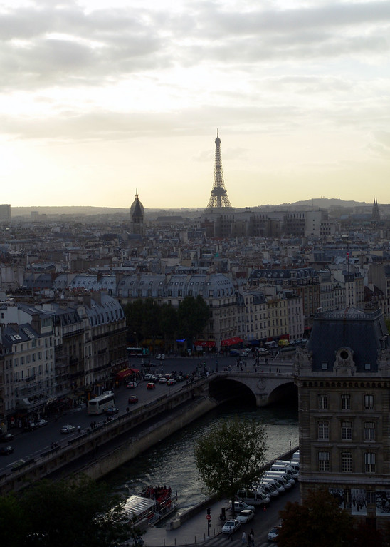View of the Eiffel Tower from Notre Dame  Cathedral