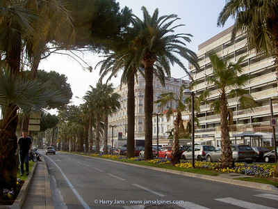 Boulevard in Cannes