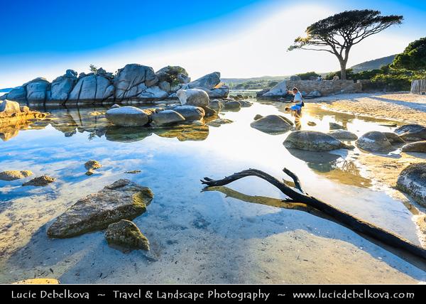 Europe - France - Corsica Island - Corse - Corse-du-Sud - Corsican South-East Coast on shores of Mediterranean Sea - Porto Vecchio - Plage de Palombaggia - Palombaggia Beach - One of the most popular beaches in Corsica & considered one of finest beaches in Europe