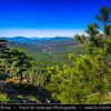 Europe - France - Corsica Island - Corse - Corse-du-Sud - Bavella Mountains - Col de Bavella - Bocca di Bavedda - 1 218 m - Part of GR20