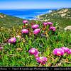 Europe - France - Corsica Island - Corse - Haute-Corse - Corsica