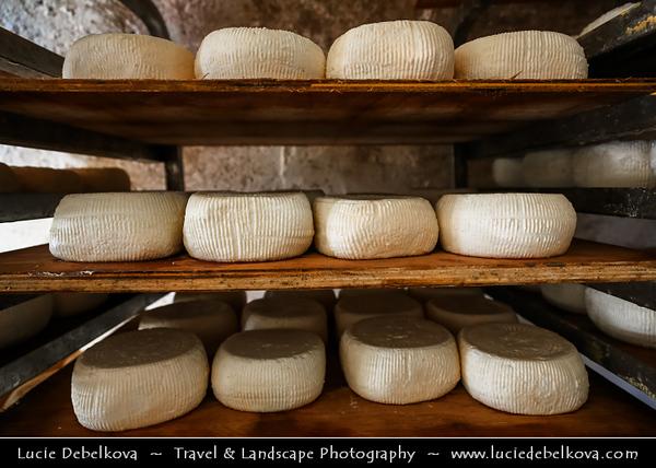 Europe - France - Corsica Island - Corse - Haute-Corse - Corsican North Coast on shores of Mediterranean Sea - Traditional Goat Cheese