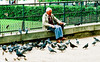 He wasn't feeding the birds, but either he had been or someone else who usually sits there always does.