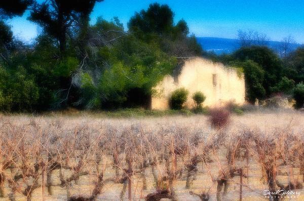 Farm House and Vineyard #1 - Provence, France