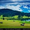 Europe - Germany - Deutschland - Bavaria - Bayern - Garmisch Partenkirchen - Geroldsee Lake with Wooden Huts during Early Morning