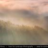Europe - Germany - Deutschland - Saxony - Sachsen - Saxon Switzerland National Park - Sächsische Schweiz - Hilly climbing area around the Elbe valley - Elbe/Labe Sandstone Mountains - Bizarre & intriguing landscape with huge, smooth rocks & deep, narrow valleys & gorges - Bastei area during autumn early morning foggy sunrise