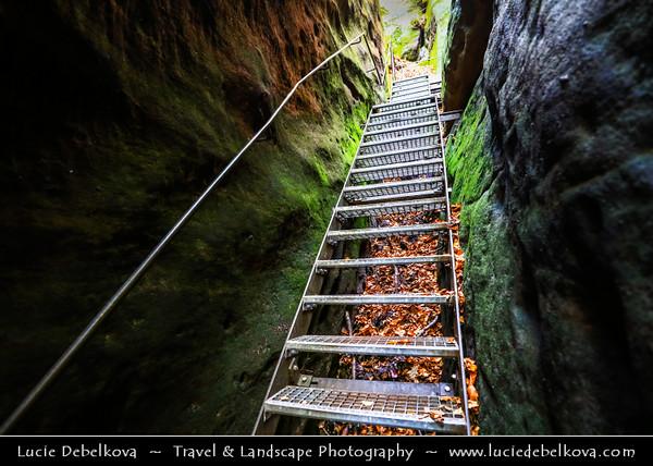 Europe - Germany - Deutschland - Saxony - Sachsen - Saxon Switzerland National Park - Sächsische Schweiz - Hilly climbing area around the Elbe valley - Elbe/Labe Sandstone Mountains - Bizarre & intriguing landscape with huge, smooth rocks & deep, narrow valleys & gorges - Walk on path to Schrammsteine