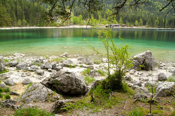 Green shades Eibsee, Garmish Partenkirchen 1