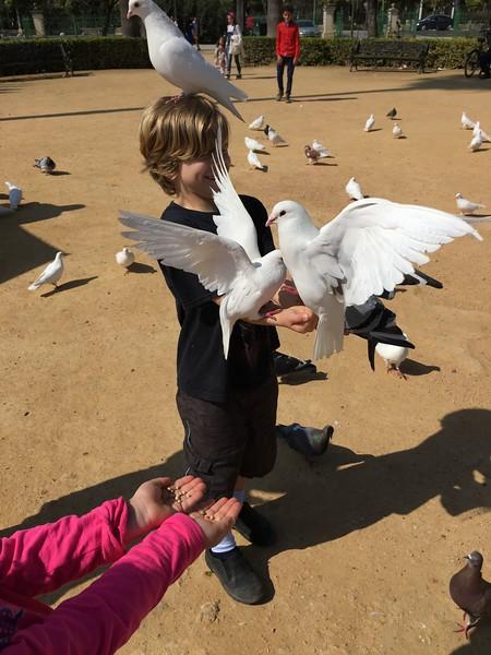 Feeding pigeons at the Plaza de America