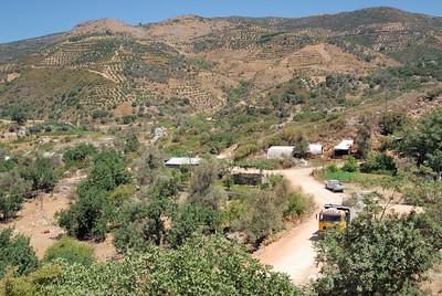The village farmlands