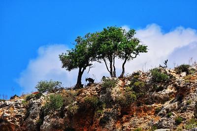Crete Landscapes
