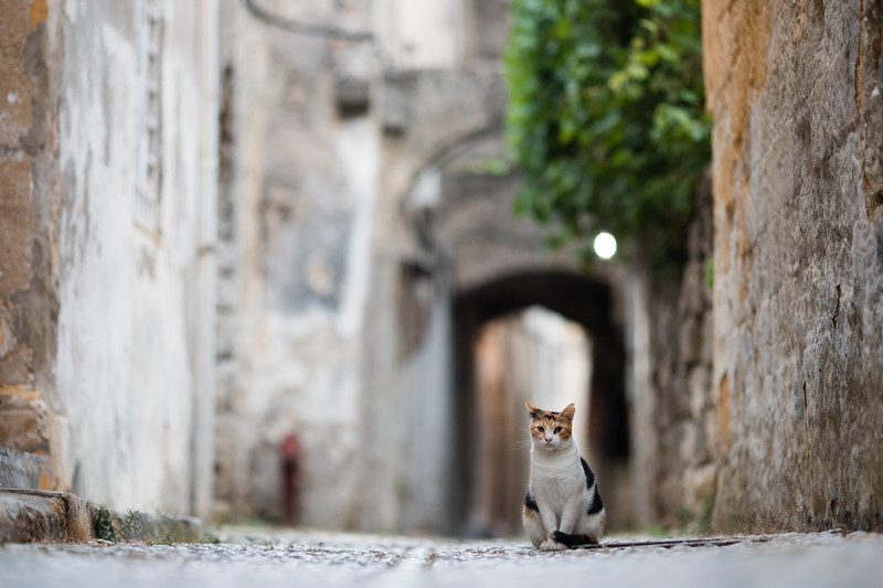 The old town of Rodos on the island of Rhodes, Greece.