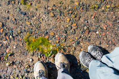 """Putting our """"feet"""" in the Gulf of Finland. (a little too cold)"""