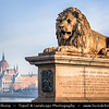 Europe - Hungary - Magyarország - Budapest - Capital City - UNESCO World Heritage Site - Hungarian Parliament Building - Seat of the National Assembly of Hungary on eastern banks of River Danube - Famous Hungarian landmark & Lion Statue on Széchenyi Chain Bridge - Széchenyi lánchíd