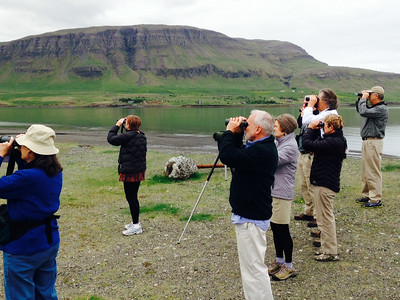Birding along the lakes and fjords, we found...