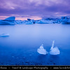 Europe - Iceland - South Eastern Iceland - Jökulsárlón Glacier Lagoon - The largest glacier lagoon at the head of the Breiðamerkurjökull glacier branching from the Vatnajökull - Floating Icebergs at Dramatic Sunset