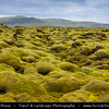 Europe - Iceland - Southern Iceland - Moss covered lava fields along Route 1 - Ring Road - Þjóðvegur 1 - Hringvegur - Main road that runs around the island & connects most populous parts of the country