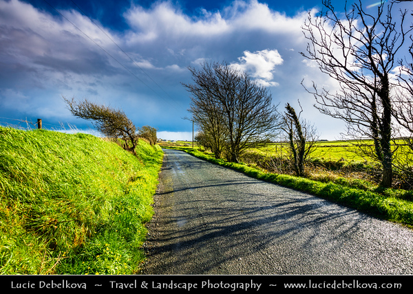 Europe - Ireland - Éire - Airlann - Airlan - County Waterford - Traditional Irish countryside under stormy light and weather