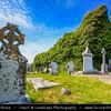 Europe - Ireland - Éire - Airlann - Airlan - County Clare - Reilig Ceathru an Easpaig - Bishop's Quarter Graveyard