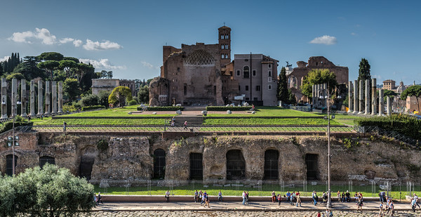 View from the Colosseum