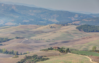 Cypress-lined Road, Val d'Orcia