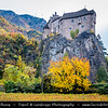 Europe - Italy - Italia - Alps - Province of South Tyrol - Tirol - Bolzano valley basin - Magical area with historical castles and vineyards - Rows of grape bearing vine plantation for winemaking during autumn time with fall warm changing colors