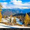 Europe - Italy - Italia - Alps - Landscape along Mendel Pass - Mendelpass - Passo della Mendola - 1,362 metre-high mountain pass between provinces of Trentino and South Tyrol - Winter time with snow cover