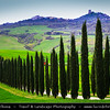 Europe - Italy - Italia - Tuscany - Toscana - Val d'Orcia - Orcia Valley - UNESCO World Heritage Site - Typical view of the rolling hills - Historic, artistic & landscape area of extraordinary beauty - Iconic Tuscan road with cypress trees on fresh green field during early spring