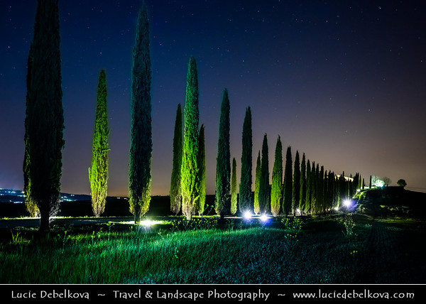 Europe - Italy - Italia - Tuscany - Toscana - Val d'Orcia - Orcia Valley - UNESCO World Heritage Site - Typical view of the rolling hills - Historic, artistic & landscape area of extraordinary beauty - Iconic Tuscan road with cypress trees during Twilight - Blue Hour - Night - Dusk