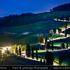 Europe - Italy - Italia - Tuscany - Toscana - Val d'Orcia - Orcia Valley - UNESCO World Heritage Site - Typical view of the rolling hills - Historic, artistic & landscape area of extraordinary beauty - Iconic curvy road with cypress trees on fresh green field during early spring - Night view